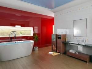 Bathroom with red wall
