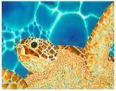 Sparkling Caribbean by Daniel Jean-Baptiste Turtle e-card