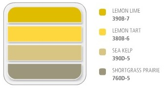 Yellow, Brown and Grey Color Scheme