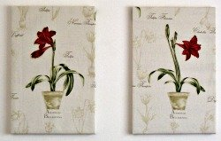 Amaryllis tapestry style wall panels