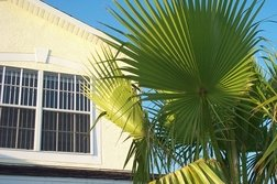 House Front With Palm Leaf